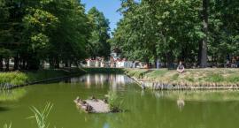 Białystok został wyróżniony w kategorii ekologicznej