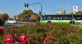 Pętla autobusowa przy Warszawskiej jednak będzie budowana