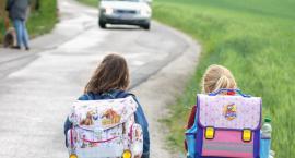 Dziecko bezpieczne na drodze. Ruszyła kolejna akcja