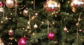 Przeciętna polska rodzina planuje wydać na Święta Bożego Narodzenia ponad 700 zł