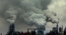 Mieszkańcy powinni włączać się w walkę ze smogiem