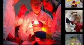 Noc szalonego chemika