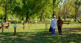 W Parku Antoniuk działa już sad edukacyjny