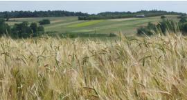 Województwo podlaskie może być doliną rolniczą przyszłości