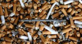 Akadera poleca: Garażowy skład tytoniowy