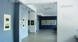 Zidentyfikowany obiekt artystyczny  — galeria imienia Śleńdzińskich