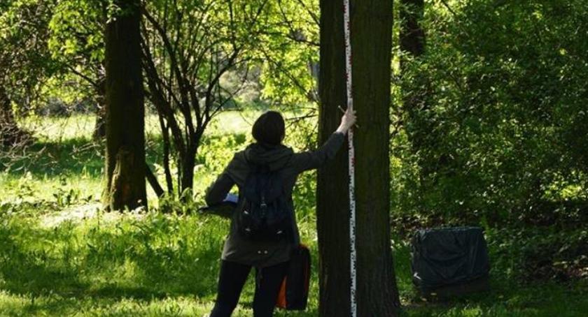 Zieleń, Arboryści Parku Skaryszewskim - zdjęcie, fotografia