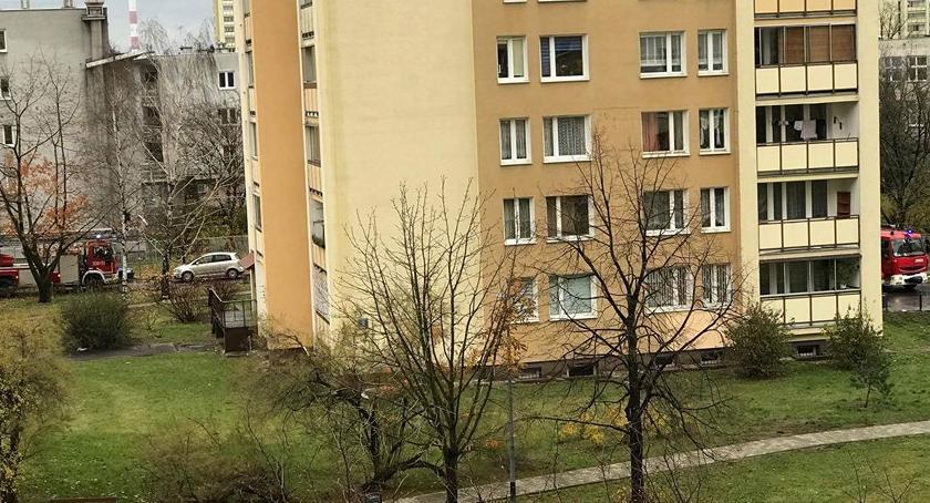 Bezpieczeństwo, Poranna akcja służb osiedlu Ostrobramska - zdjęcie, fotografia