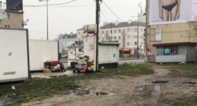 Zieleń, Sterty kartonów śmieci butelek wielka kałuża - zdjęcie, fotografia