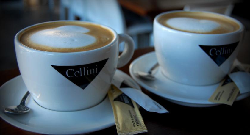 Makroklimat - Cafe Bistro o wyjątkowym klimacie