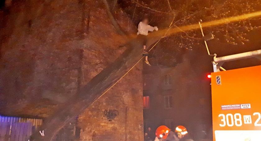 Bezpieczeństwo, Dziecko drzewie nietypowa interwencja strażaków [ZDJĘCIA] - zdjęcie, fotografia