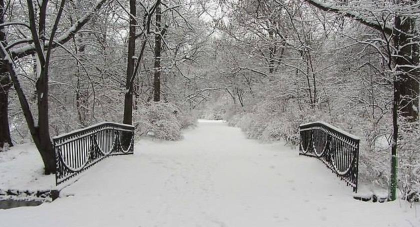 Imprezy plenerowe, Uroki Skaryszaka zimową porą niezwykły spacer niedzielę - zdjęcie, fotografia
