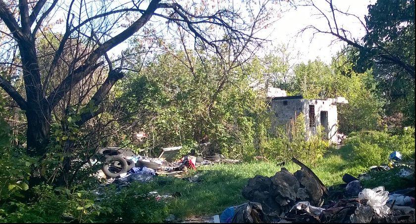 Zieleń, Znikają ogródki działkowe Dworcu Wschodnim - zdjęcie, fotografia