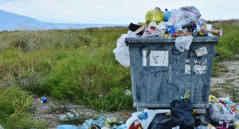 Mieszkalnictwo, Sprzątanie Warszawy TrashTag Challenge Pradze Południe - zdjęcie, fotografia
