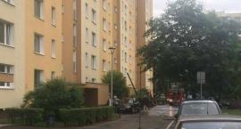 Tragedia na Łukowskiej - prawdopodobnie samobójstwo