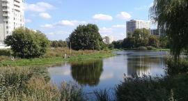 Jeziorko Gocławskie - czy powróci w zasoby miasta?