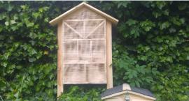 Na Pradze-Południe powstanie nowy Hotel, co prawda dla owadów i domek dla jeży
