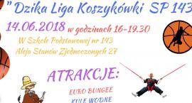 Dzika Liga Koszykówki już 14 czerwca!