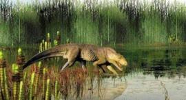 Czy dinozaury mogły żuć gumę?