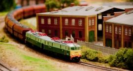 Świat kolei w miniaturze na Narodowym