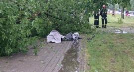 Al. Waszyngtona: drzewo spadło na kobietę z wózkiem