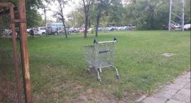Porzucony wózek, z dala od swojego naturalnego środowiska