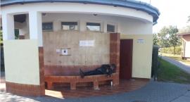 Przy ujęciu wody oligoceńskiej na Motorowej zmarł bezdomny, z którego śmiali się na Facebooku