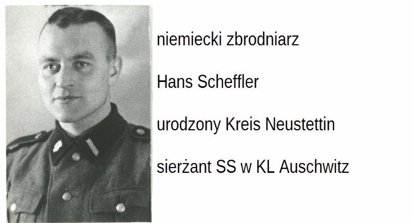 Opinie i felietony, Berezowski powiedzą Scheffler Gross Dallenthin - zdjęcie, fotografia