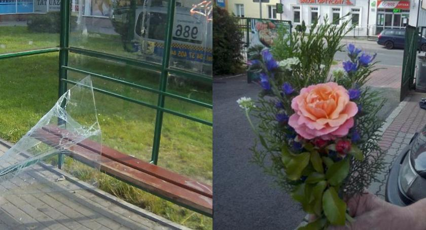 Pijany dziadek na ulicy z wnuczkiem. Pszczoły się roją, zakochany kradnie róże z ronda
