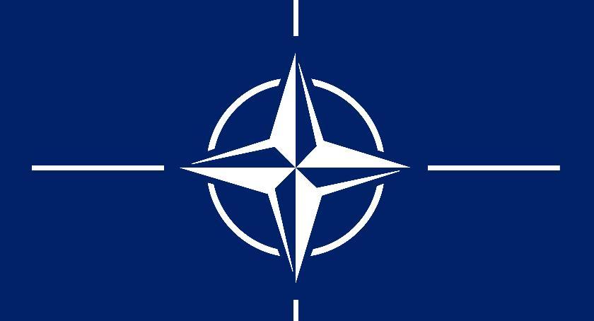 Wojska NATO w Wilczych Laskach, Dzikach i Turowie