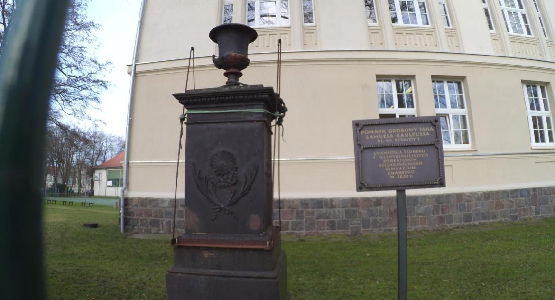 Ostatnia szansa na ratunek pomnika Kaulfussa.