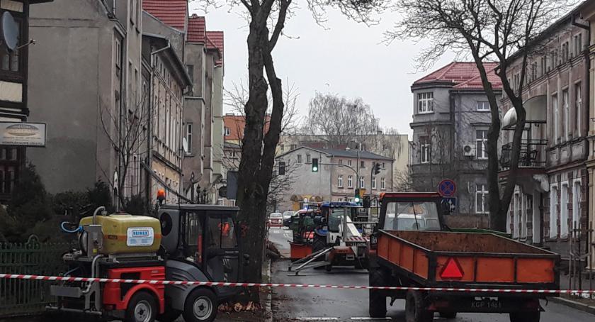 Aktualności, Szczecinku stuletnie drzewa znikają Pileckiego wycinka - zdjęcie, fotografia