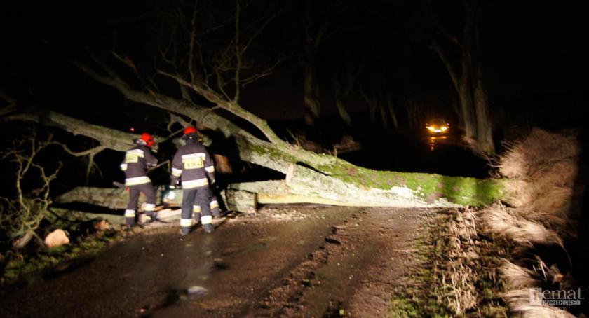 Straż Pożarna, Silne wiatry wichury Interweniowali strażacy Szczecinka - zdjęcie, fotografia