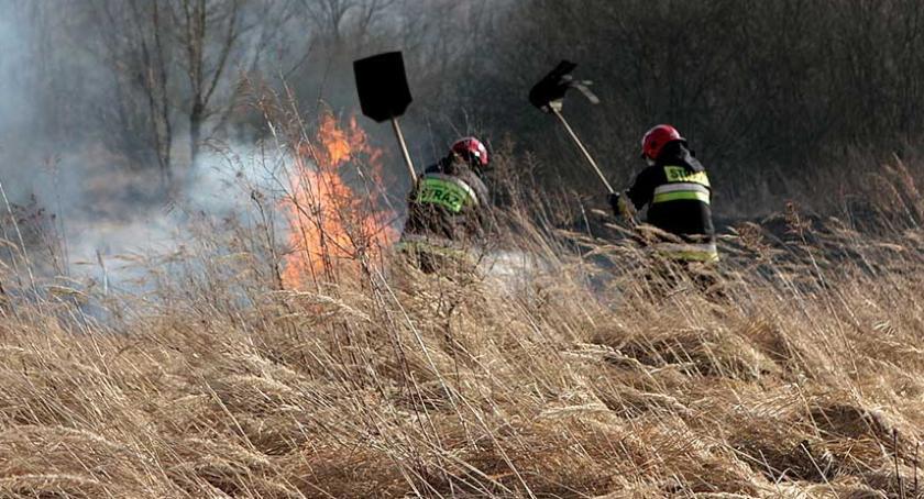 Wypalanie traw. Wiosenna zmora leśników i strażaków właśnie się pojawiła