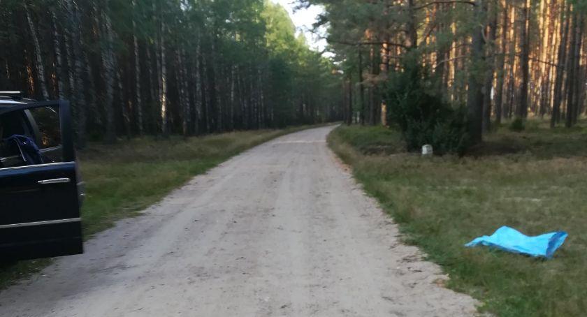 Porzucony pies nadal błąka się po lesie. Czytelniczka: Bardzo się boi, nie daje się złapać