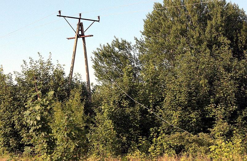 Aktualności, Groźnie Bugnie Zatańczyła linia energetyczna podpaliła trawę - zdjęcie, fotografia
