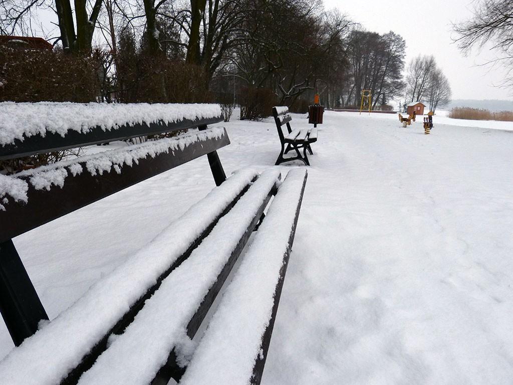 Opinie i felietony, Jerzy Gasiul pierwszym śniegiem - zdjęcie, fotografia