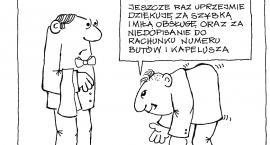 Maciej Gaca: Książka...