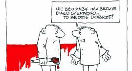 Maciej Gaca: Oooo