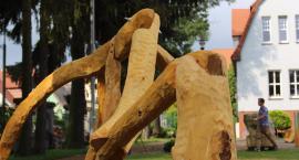 Kolejne prace studentów, które staną w szczecineckim parku