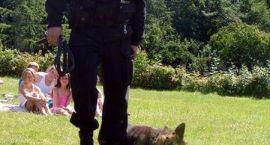 Policjanci z wizytą u dzieci na obozie w Drężnie
