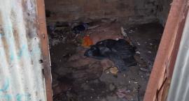 Szczecineccy bezdomni zamiast spać w altankach, będą mogli się ogrzać