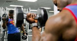 Budowa masy mięśniowej - wszystko co musisz wiedzieć