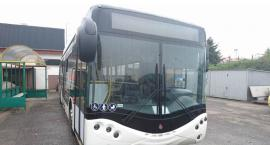 Autobusy na prąd wcale nie muszą być biało zielone