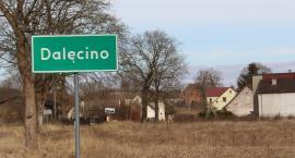 Plany chlewni w Dalęcinie: 1300 tuczników w jednym miejscu. Co dalej?