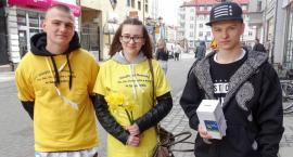 W Szczecinku znów zakwitną Pola Nadziei! Poszukiwani są wolontariusze