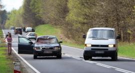 Jedna sarna uszkodziła trzy samochody na DK11 [Wrzuć Temat]