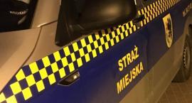 Rowerzystki po wpływem alkoholu uciekały strażnikom. Miały prawie po dwa promile