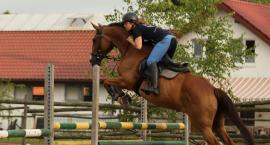 Towarzyskie Zawody Jeździeckie w Strzeszynie. Zaproszenie