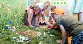 Centra edukacji ekologicznej będą działały wspólnie